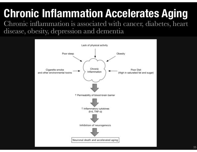 慢性炎症が老化を誘導することを示した図