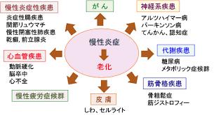 慢性炎症と老化の組合せによりさまざまな病気が起こることを示す図