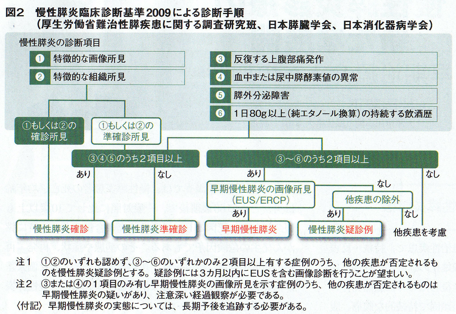 早期慢性膵炎の診断手順を示した図