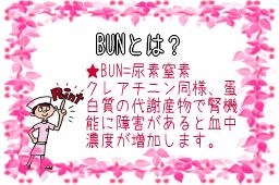 BUNについて説明した図