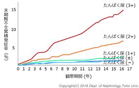 蛋白尿の有無 持続時間が末期腎不全進行に関与することを示すグラフ