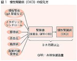 ckdが様々な病気が原因で起こることを示す図