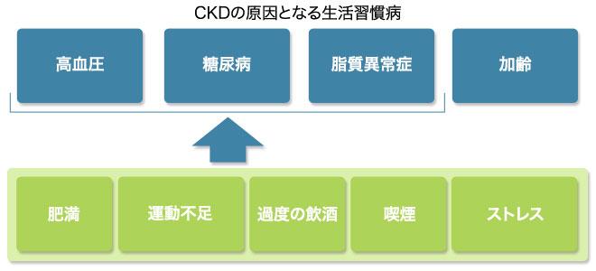 ckdの原因となる生活習慣病についてまとめた図