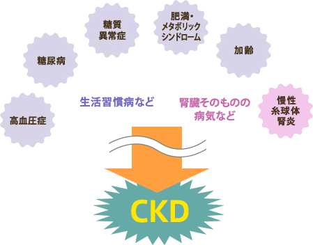 腎臓病によるCKD