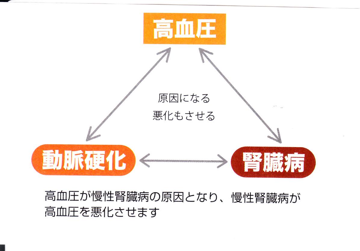 CKDと高血圧の関連を示す図
