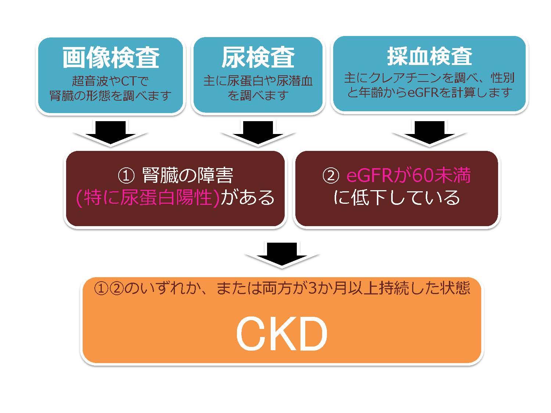 ckd83