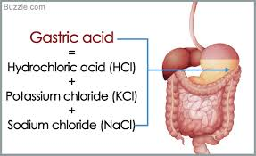 胃酸に分泌されることを示す図