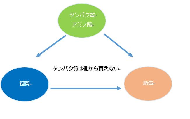 3大栄養素のクロストークを示す図