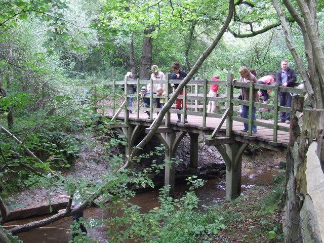 プーの橋から木の枝を川に投げている人の姿