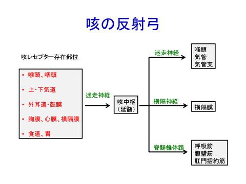 反射経路の詳細を示す図