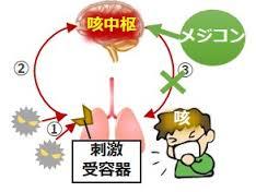 脳の咳中枢に鎮咳薬が作用するのを説明する図