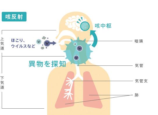 異物探知が咳反射の引き金を引くことを説明する図