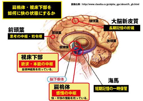 扁桃体の働きをまとめた図