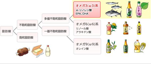 脂肪酸の分類を示した図