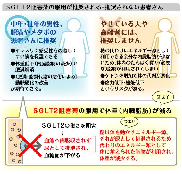 SGLT2阻害薬の減量効果を示す図