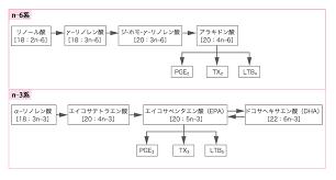 n-3系不飽和脂肪酸から産生されるエイコサノイド
