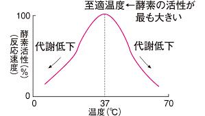 至適温度について説明した図