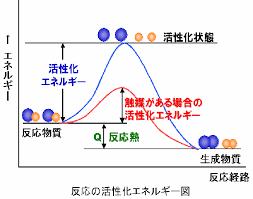 酵素反応の活性化エネルギー 反応熱について説明した図