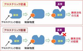 構造変化により反応が正または負に制御されることを示す図