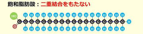 飽和脂肪酸の構造図