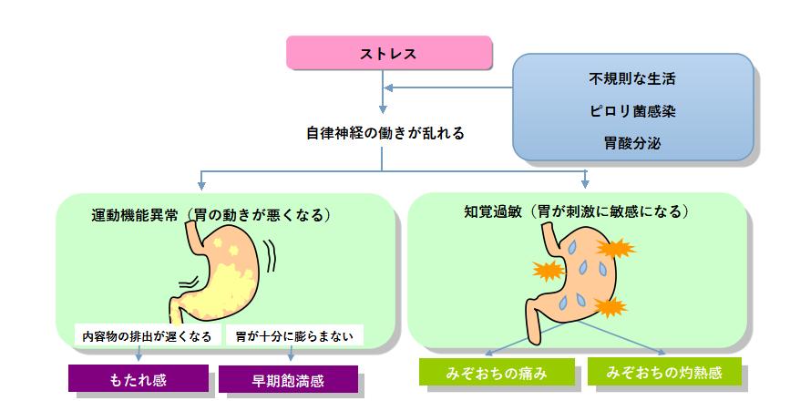 胃の知覚過敏の説明図