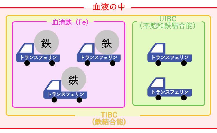 不飽和鉄結合能(UIBC)について説明した図