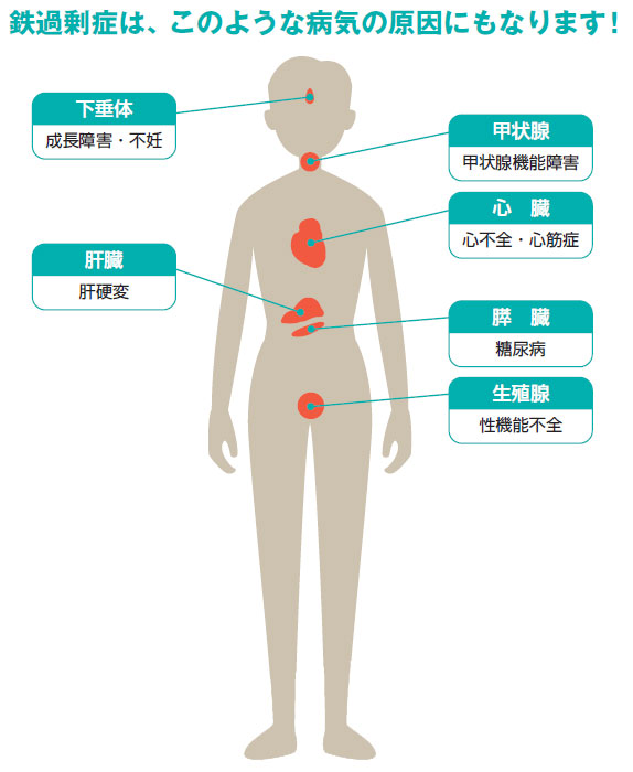 鉄過剰で生じる病気をまとめた図