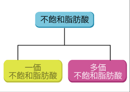 不飽和脂肪酸の分類