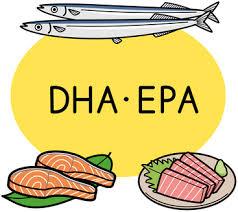 EPA DHAを多く含む食品