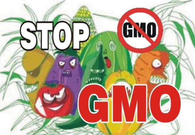 遺伝子組み換え食品(GMO)に反対するポスター