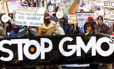 遺伝子組み換え食品(GMO)に反対するデモ
