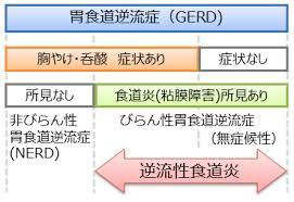 GERDの分類を示す図