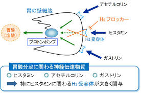 H2RAの作用機序を説明する図