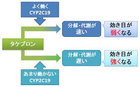 CYP2C19の遺伝子多型がPPIの代謝に及ぼす影響について解説した図
