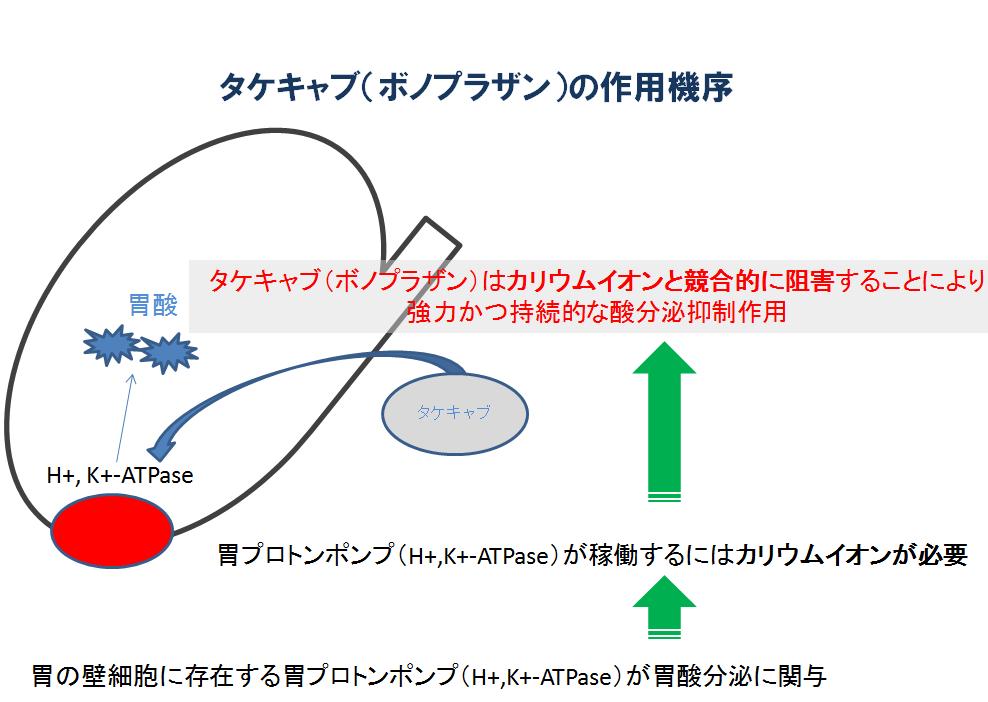 タケキャブの作用機序を示した図
