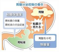 粘膜保護薬 制酸薬の説明図