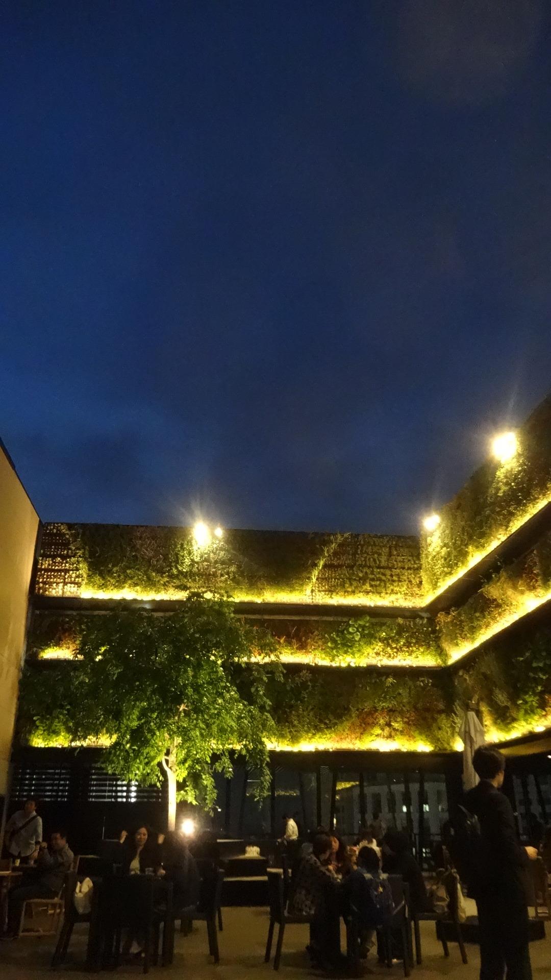オープンエアーの屋上
