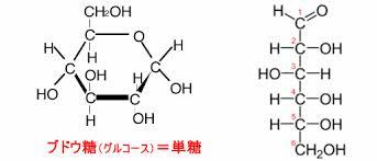 糖質の構造式