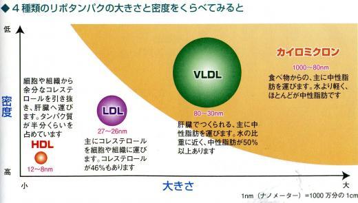 HDLが高密度であるっことを示した図