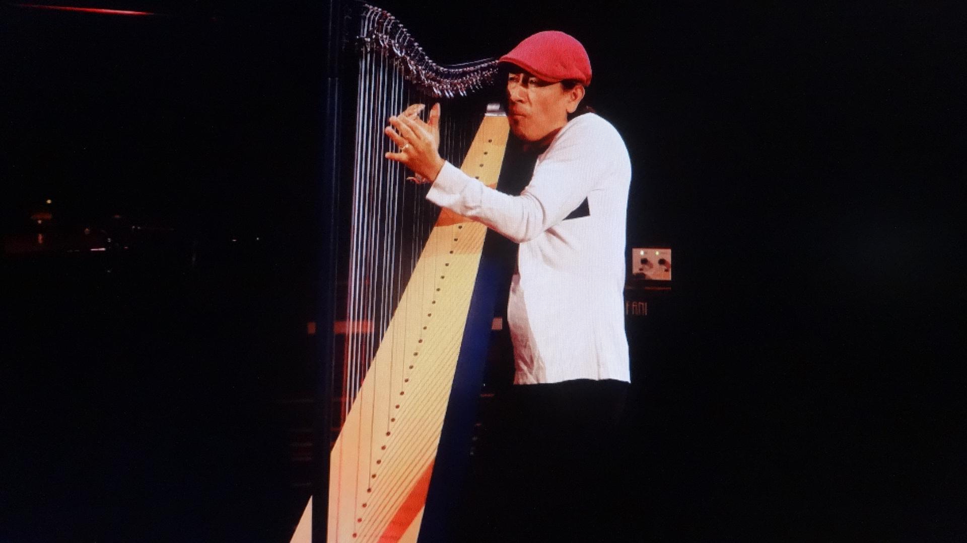 ハープ全体を抱きかかえるように演奏するEDMAR