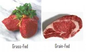 グラスフェッド グレインフェッドのお肉