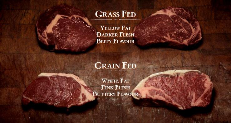 グラスフェッド グレインフェッドのお肉2