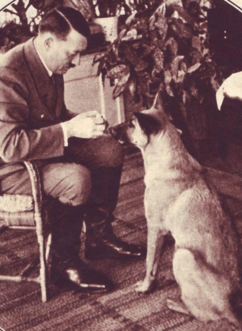 犬をかわいがるヒトラー