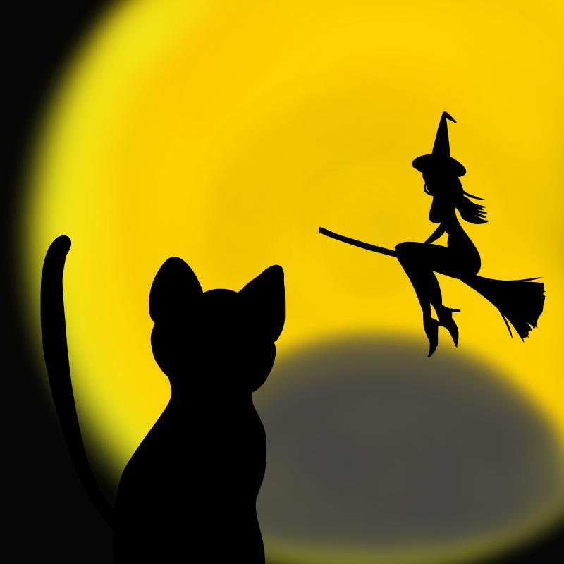 月夜の魔女と黒ネコ