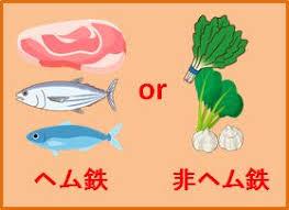 ヘム鉄 非ヘム鉄を多く含む食材を示す図