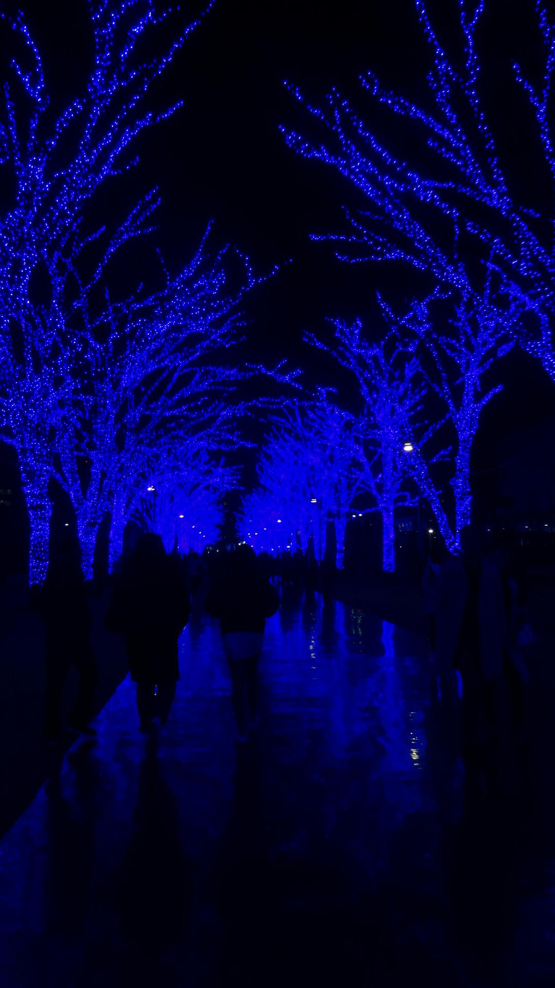 青の洞窟のイルミネーション3