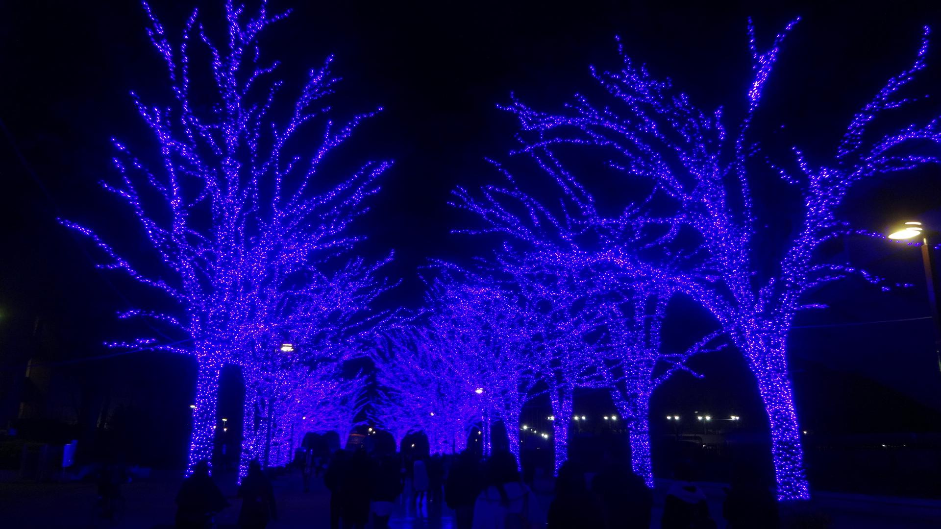 寒空にブルーのライティング