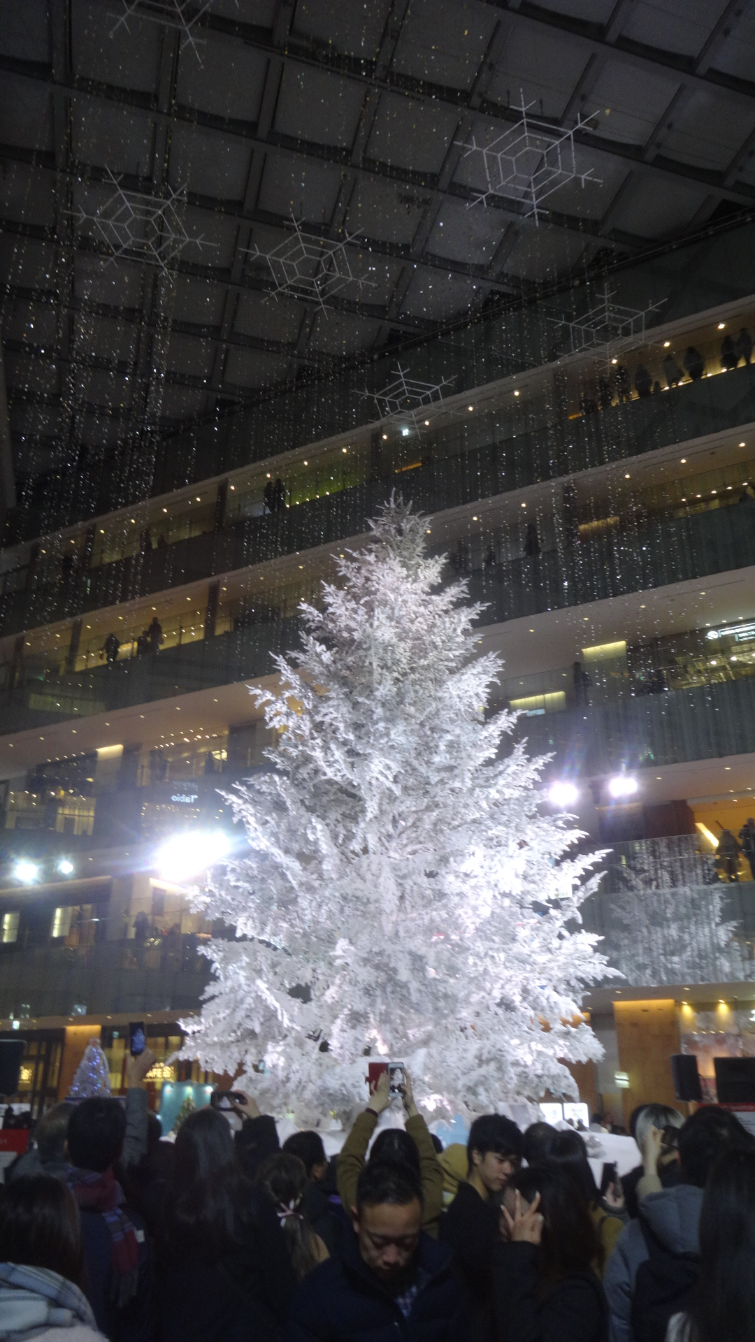KITTEのホワイトクリスマスツリー1