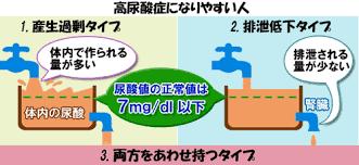 高尿酸血症の原因となる 産生過剰と排泄低下