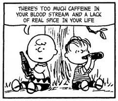 セリフが英語で書かれたチャーリーブラウンの漫画